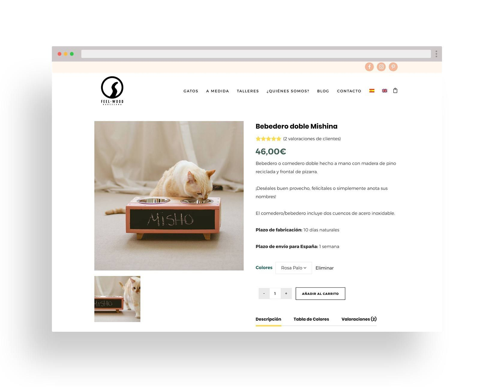 tienda online gatos